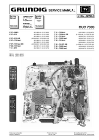 Suplemento Manual de servicio Grundig T 55 - 731 text