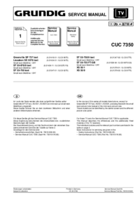 Manuale di servizio Supplemento Grundig Greenville SP 737 text