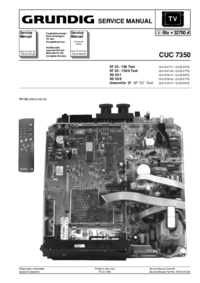 Manual de servicio Grundig Greenville 37