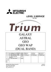 Servicehandboek Mitsubishi Trium Geo Wap